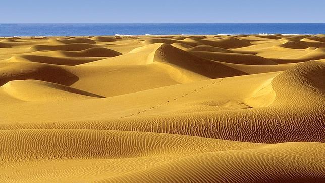 Las Dunas de Maspalomas, o un trozo del desierto en medio del paraíso