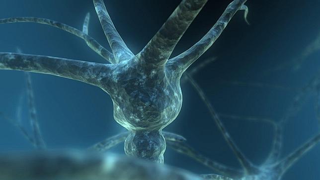 Un superordenador japonés consigue simular la mayor red neuronal