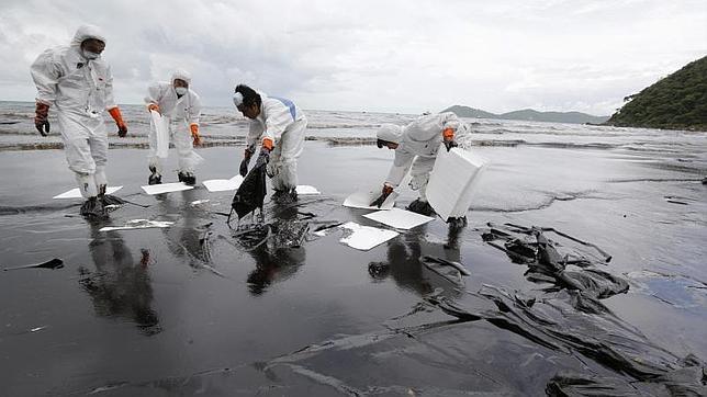 Desarrollan una técnica para limpiar el petróleo del agua inspirada en los cactus
