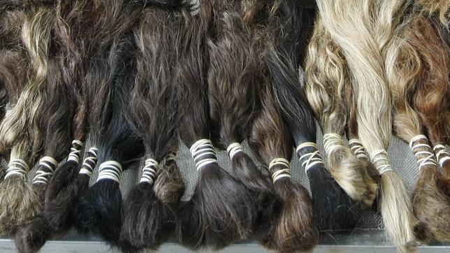 «Pirañas» que roban el cabello en Venezuela