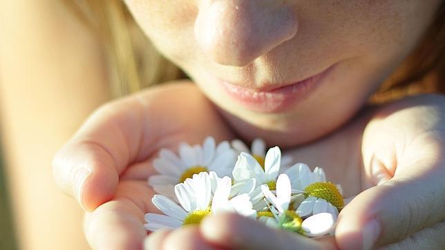 Los diez olores que reconoce el ser humano
