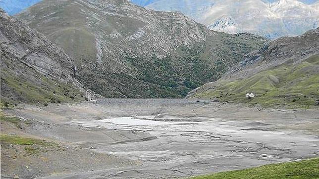 El Gobierno aragonés denuncia a Acciona por la asfixia masiva de peces