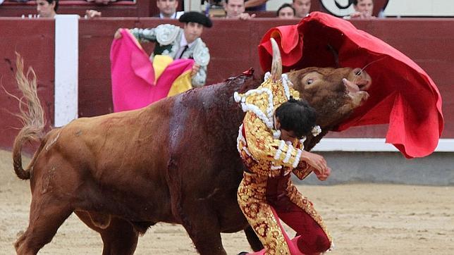 Joselito Adame cae lesionado por una brutal cogida en Las Ventas