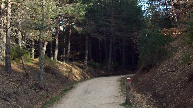 Diez vías verdes donde gozar del esplendor del otoño