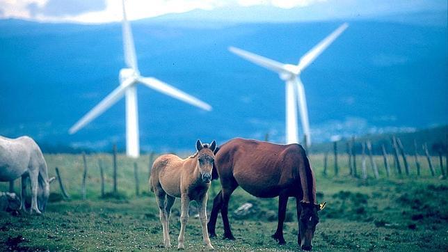 Aunque su evolución es positiva en cuanto a la meta de consumo de energía proveniente de las renovables