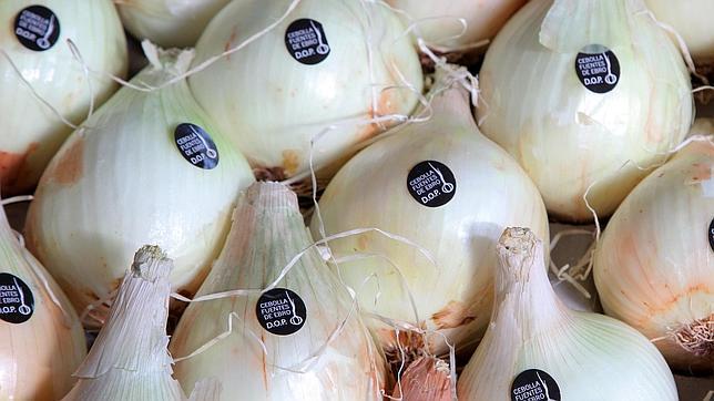 La «cebolla de Fuentes» es la única de Europa con denominación de origen