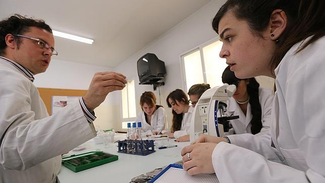 La formación profesional, un pilar clave en la Lomce