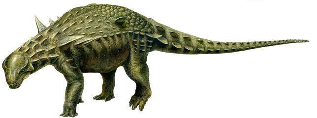 Hallan en una mina de Teruel el dinosaurio acorazado más completo de Europa