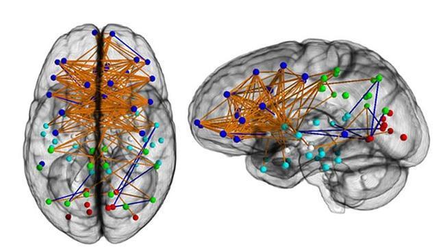 El cerebro de las mujeres está mejor preparado para hacer varias cosas a la vez