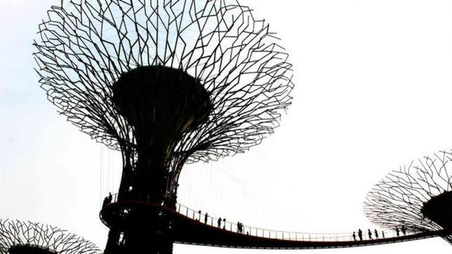 Las fotos de arquitectura m s bellas del a o - Arboles artificiales madrid ...