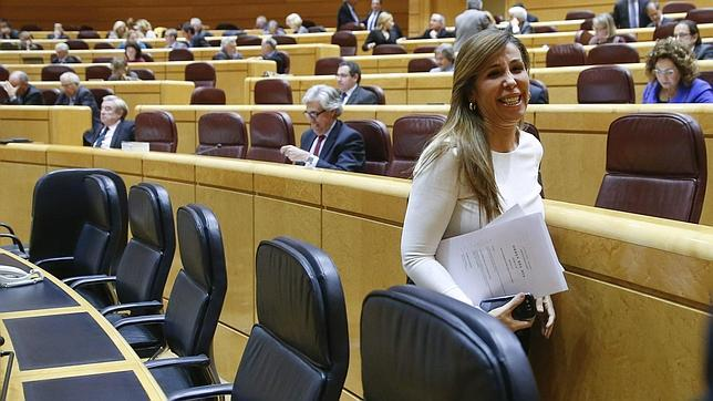 Sánchez-Camacho prepara un «Foro de la verdad» que cuente «con rigor» la realidad catalana