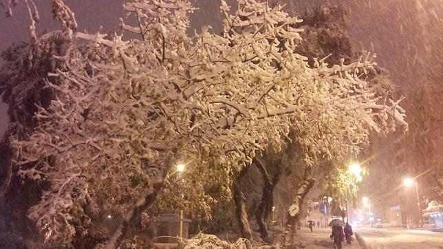 Nieva en Jerusalén