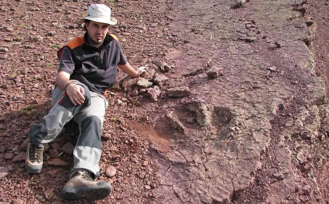 Identifican en La Rioja la huella de un nuevo dinosaurio bípedo de gran tamaño