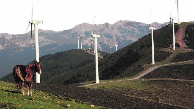 El precio de la electricidad se desploma tras la polémica subasta de diciembre