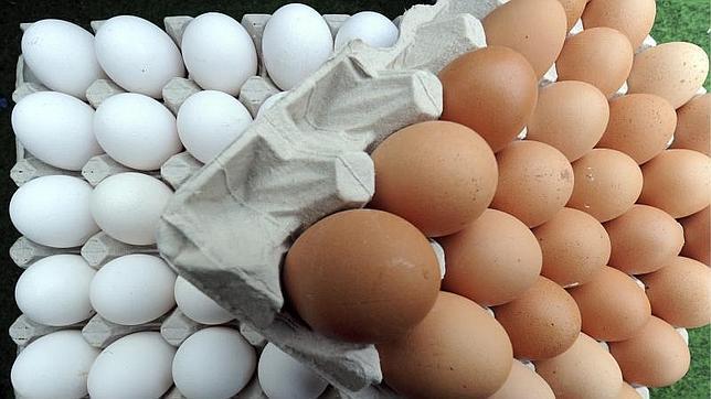 Si estás sano, puedes comer un huevo diario