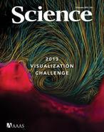 Las mejores imágenes científicas del año, según Science