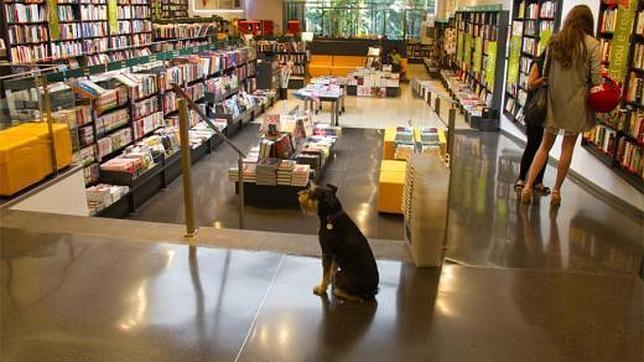 Gu a para compartir una jornada completa con tu perro en barcelona - Casa del libro barcelona rambla catalunya ...