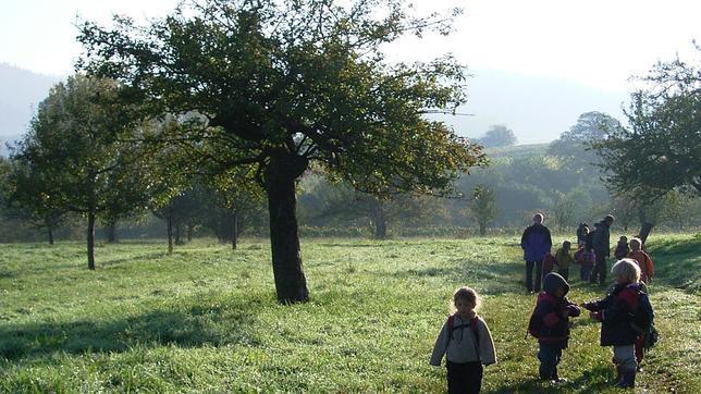 Un bosquescuela es un modelo orientado hacia la sostenibilidad