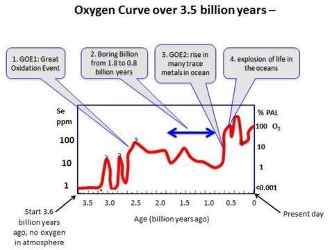 ¿Por qué la vida no evolucionó durante 3.000 millones de años?