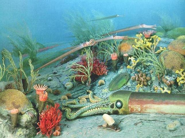 Resultado de imagen de Despues de miles de millones de años surgieron las primeras formas de vida