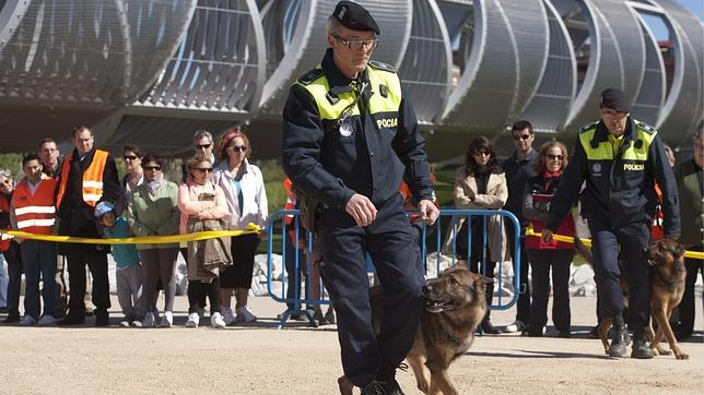 Los policías municipales de más edad podrán dejar la calle