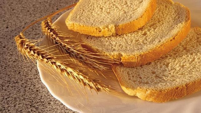 Pan de trigo para celíacos