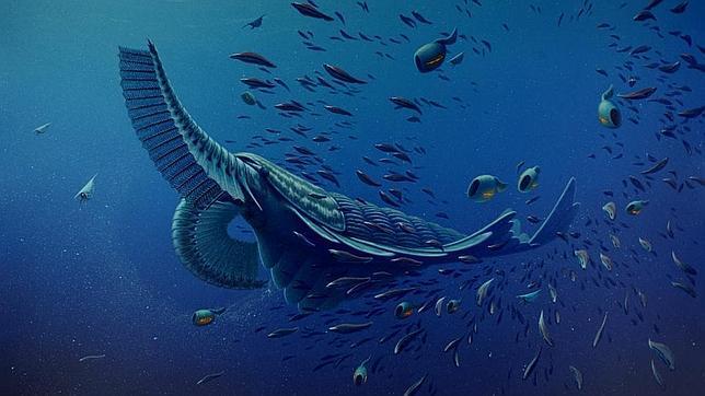 La tranquila «gamba» gigante del Cámbrico
