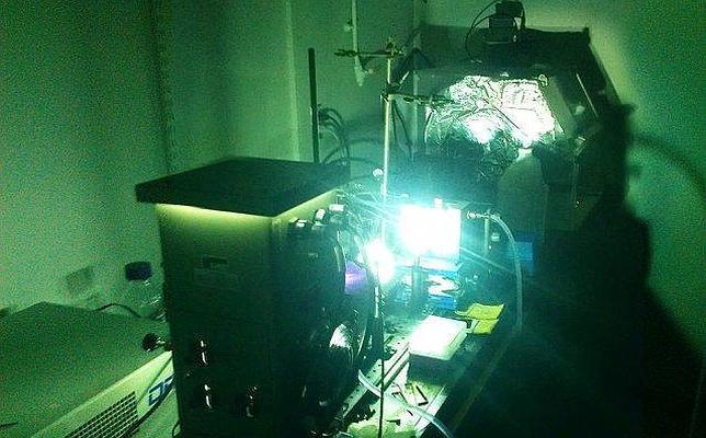 Una poderosa lámpara es utilizada para simular la energía del Sol en el experimento