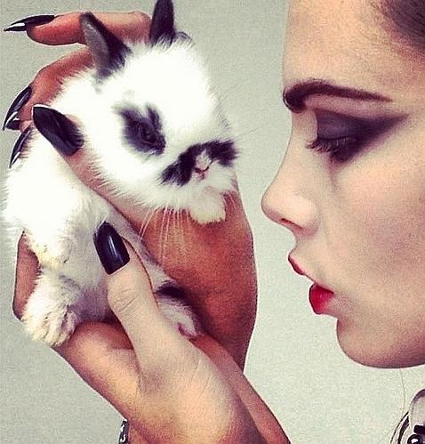 prostitutas vice caras de conejos