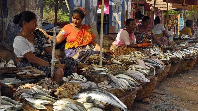 Puestos de pescados en Goa