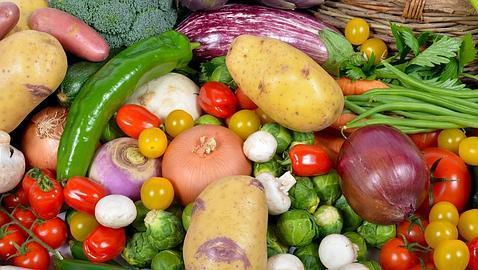 Novasalud servicios sanitarios comer m s frutas y verduras reducir a el impacto del ictus en - Informacion sobre la fibra vegetal ...