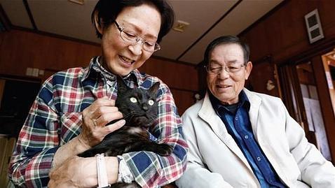 Sus dueños estuvieron buscando al felino, su mascota durante 12 años, tres meses