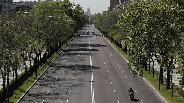 Doscientas calles de madrid sufrir n cortes de tr fico esta semana por la poda y plantaci n de - Poda de arboles madrid ...