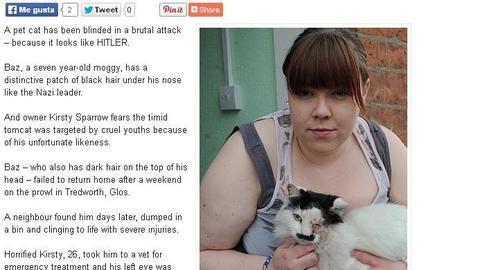 Golpean a un gato que se «parece» a Hitler