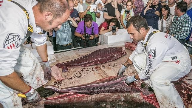 Ronqueo de atún de Petaca Chico en la Lonja vieja de Barbate