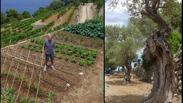 Douglas en su huerto y entre olivos