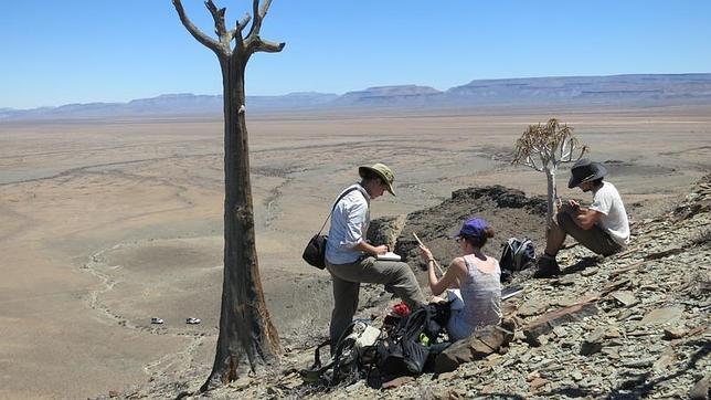 Descubren en Namibia un arrecife de 550 millones de años construido por animales
