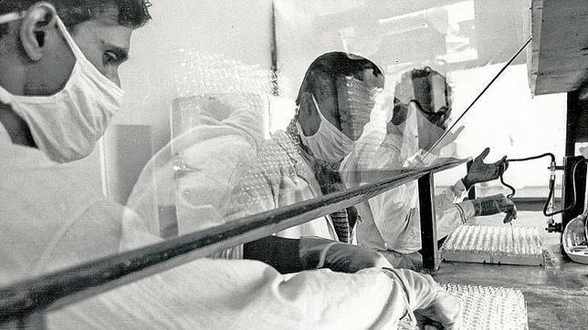 Proceso de fabricación de la vacuna de la viruela