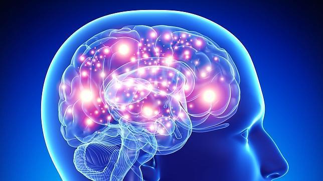 El cerebro consume el 20% de la glucosa y el oxígeno que circula por la sangre. Desaprovecharlo no sería muy «inteligente»