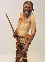 El ADN no humano de Ötzi, el «hombre de hielo»