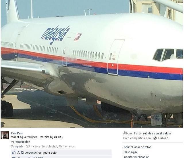 Un pasajero del vuelo MH17 derribado: «Si desaparece, éste es su aspecto»