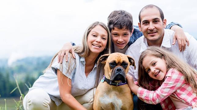 Cuál es la mejor raza de perro para vivir en casa? - ABC.es