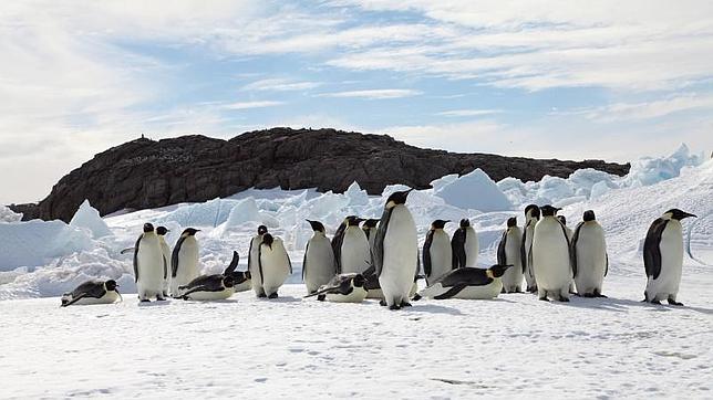 ¿Por qué se cubrió de hielo la Antártida?