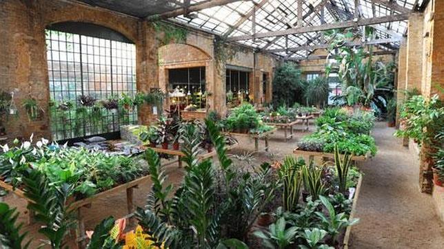 Diez curiosas tiendas de barcelona en las que perderse for Jardineria barcelona centro