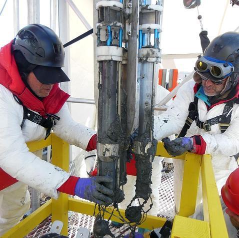 Encuentran, por primera vez, un ecosistema completo bajo los hielos de la Antártida