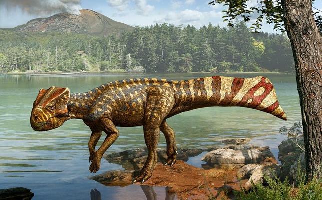 Los Diez Dinosaurios Mas Raros Descubiertos En Los Ultimos Anos Lote de 10 unidades de mini dinosaurios, juguetes educativos para niños, animales de simulación bonitos, figuras pequeñas para niños, regalo para niños. los diez dinosaurios mas raros
