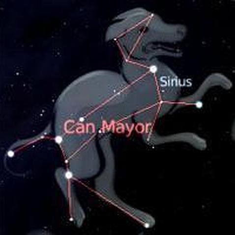 ¿De dónde viene la expresión «hace un día de perros»?