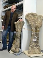 Hallan al «gigante» de la Patagonia, el dinosaurio más pesado que un Boeing 737