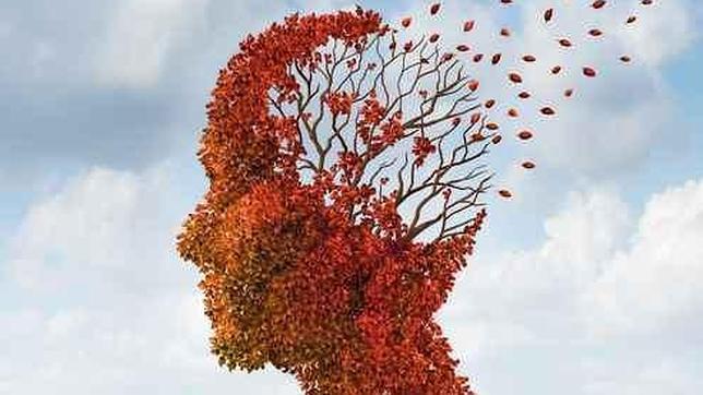 Nueve falsos mitos sobre el cerebro
