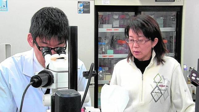 La responsable del Instituto Riken, Masayo Takahashi, una de las impulsoras del primer implante mundial de células iPS en humnos